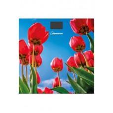 Весы HOMESTAR HS-6001I (180 кг, электрон., стекло)