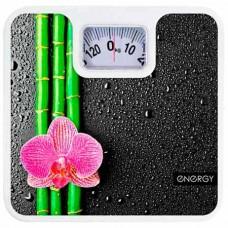 Весы ENERGY ENМ-409D
